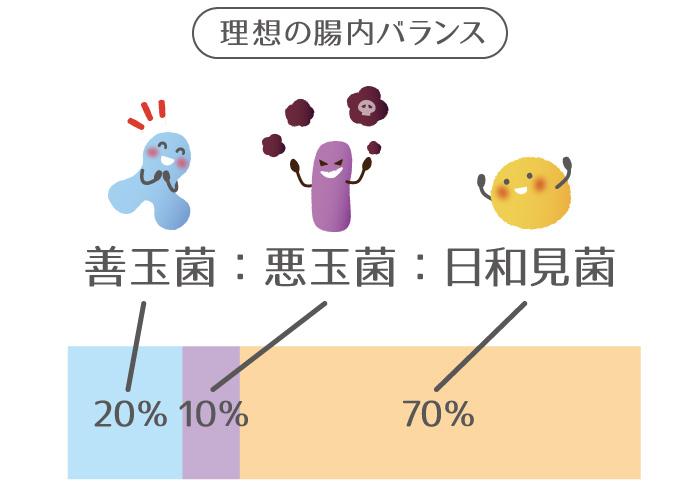 善玉菌,悪玉菌,日和見菌の説明と割合の図