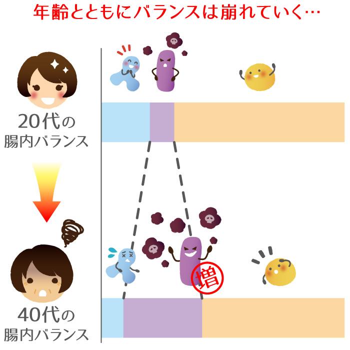 年齢とともに腸内細菌のバランスは崩れる。20代と40代の比較。