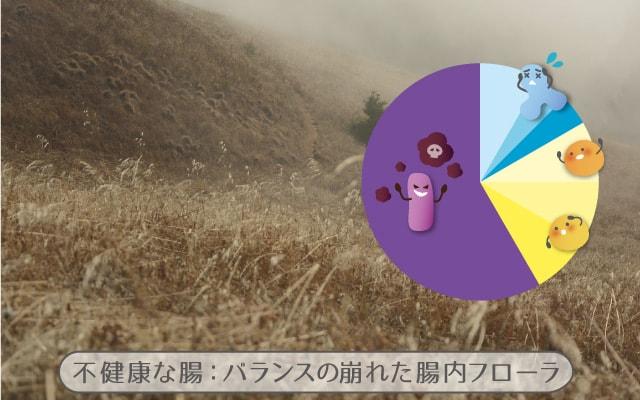 荒れ地と腸内細菌の円グラフのイメージ