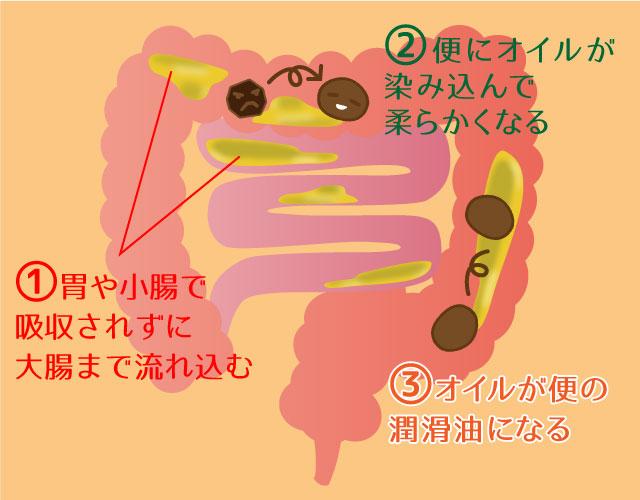 オリーブオイルが便秘に効く3ステップのイラスト